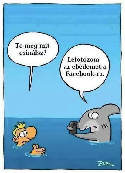 ebed-foto-facebookra