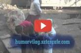 A mai nap videója :) Az Ember aki először látott lézerfényt :)