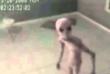 Földönkívülit fogtak és ki is hallgatták! Azt állítják eredeti a felvétel! Szerinted?