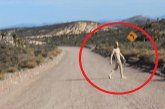 A srácok, akik állítják, hogy egy igazi UFO-t kameráztak le az 51-es körzetnél