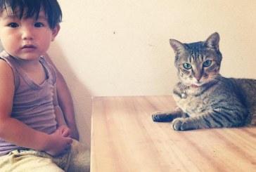 Ennek a kisfiúnak igazán különleges babysittere van! – Képek