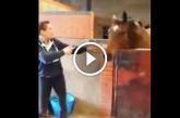 Elindul a zene, majd a ló olyat tesz, amire senki sem számít! – Videó