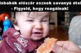Kisbabák először esznek savanyú ételt – Figyeld, hogy reagálnak!