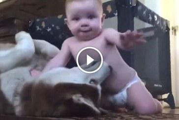 Kisbaba és a husky kutya szeretgetik egymást – A nap legcukibb felvétele!