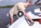 Íme a horgászok legnagyobb bénázásai! – Videó