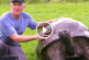 Ezt néz, mit kap szülinapjára a világ legidősebb teknőse! – Videó