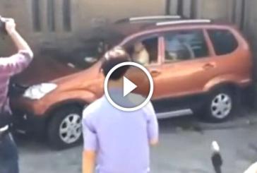 Amit egy autóiskola sem tanít! – Így parkol egy igazán profi!