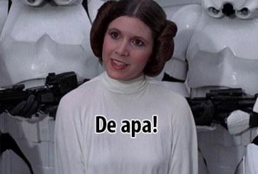 Meg ne lássalak még egyszer ezzel a Solo fiúval!