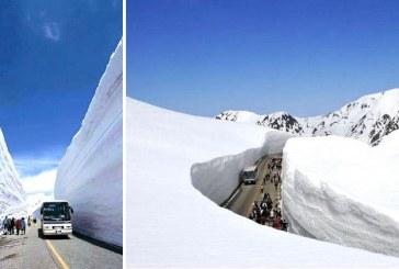Ezt nézd meg » 20 méteres hó Japánban, az utak mégis szárazak! Ha nem látom, nem hiszem el!