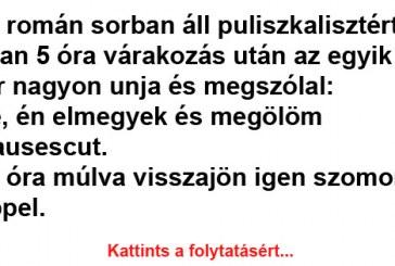 Két román sorban áll puliszkalisztért Vicc